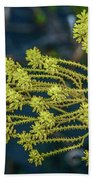 Yellow Wildflowers Beach Towel
