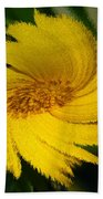 Yellow Wonder Beach Towel