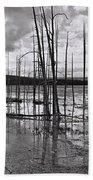 Yellowstone 145 Beach Sheet