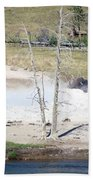 Yellowstone Park Bisons In August Beach Towel