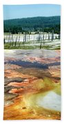 Yellowstone Park Firehole Spring Area Vertical 02 Beach Towel