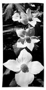 Yosemite Dogwoods Black And White Beach Towel