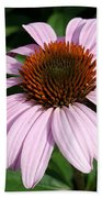 Young Echinacea Bloom Beach Towel
