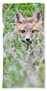 Young Fox Kit Hiding In Tall Grass Beach Towel