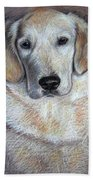 Young Golden Retriever Beach Towel