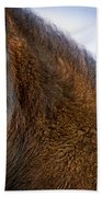 Young Icelandic Horse Beach Towel