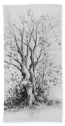 Young Tree Beach Towel by Rachel Christine Nowicki