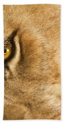 Your Lion Eye Beach Towel