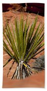 Yucca Beauty Beach Towel