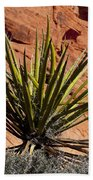 Yucca Two Beach Towel