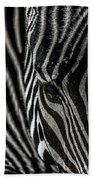 Zebra 3 Beach Sheet