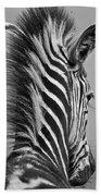 Zebra Baby Beach Towel