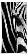 Eye Of The Zebra Beach Towel