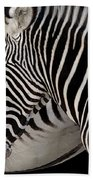 Zebra Head Beach Towel by Carlos Caetano