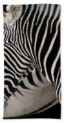 Zebra Head Beach Towel by Carlos Caetano