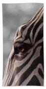 Zebra I Beach Towel