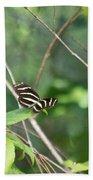 Zebra Longwing Butterfly About To Take Flight Beach Sheet