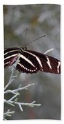 Zebra Longwing Butterfly Beach Towel