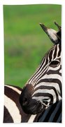 Zebra Beach Towel