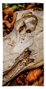 Zebra Skull Beach Towel