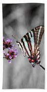Zebra Swallowtail Butterfly And Stripes Beach Towel