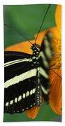 Zebra Wing Profile...   # Beach Towel