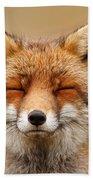Zen Fox Red Fox Portrait Beach Towel
