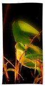 Zen Photography - Sunset Rays Beach Towel