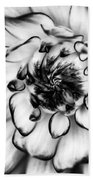 Zinnia Close Up In Black And White Beach Towel