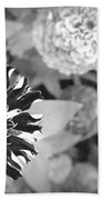 Zinnia In Black And White  Beach Towel
