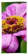 Zinnia In The Rain Beach Towel