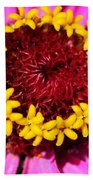 Zinnia Macro Beach Towel