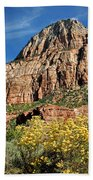 Zion Canyon - Navajo Sandstone Beach Towel