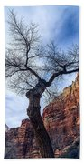 Zion Tree Woman Beach Towel