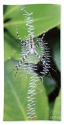 Zipper Spider Beach Towel