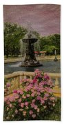 Zoo Fountain 2 Beach Towel