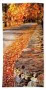 Autumn Avenue Beach Towel