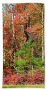 Autumn Colours In Great Smoky Mountains National Park Beach Sheet