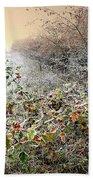 Autumn Frosts Beach Towel