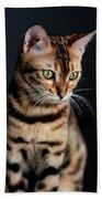 Bengal Cat Portrait Beach Towel