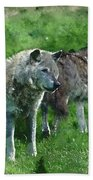 Digital Watercolor Painting Of Beautiful Timber Wolf Cnis Lupus  Beach Towel