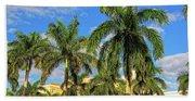 Glorious Palms Beach Sheet