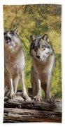 Howling Wolves Beach Sheet