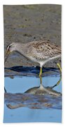 Long-billed Dowitcher Beach Towel