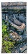 Pons Aemilius Beach Towel