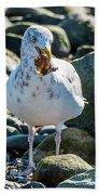 Seagull With Sail Beach Towel