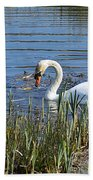 Swan Beach Towel