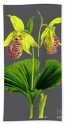 Orchid Old Print Beach Towel