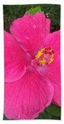 Bright Pink Hibiscus Beach Towel