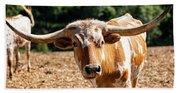 Longhorn Bull In The Paddock Beach Sheet